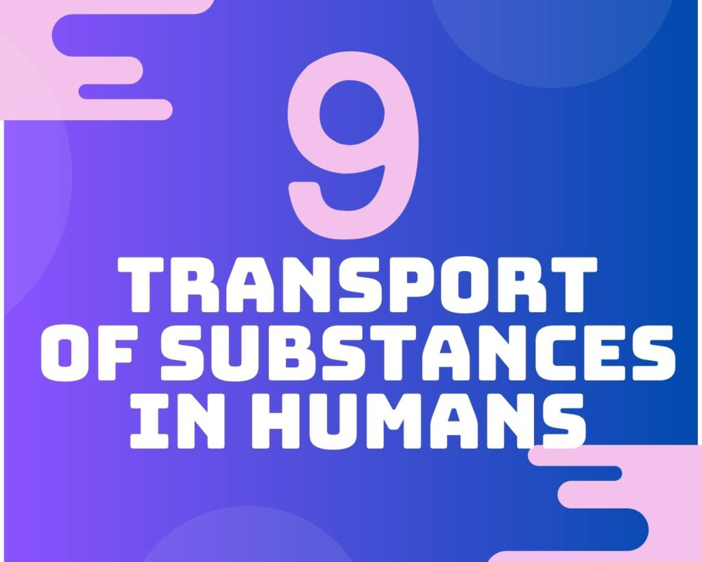 9 Transport of substances in humans