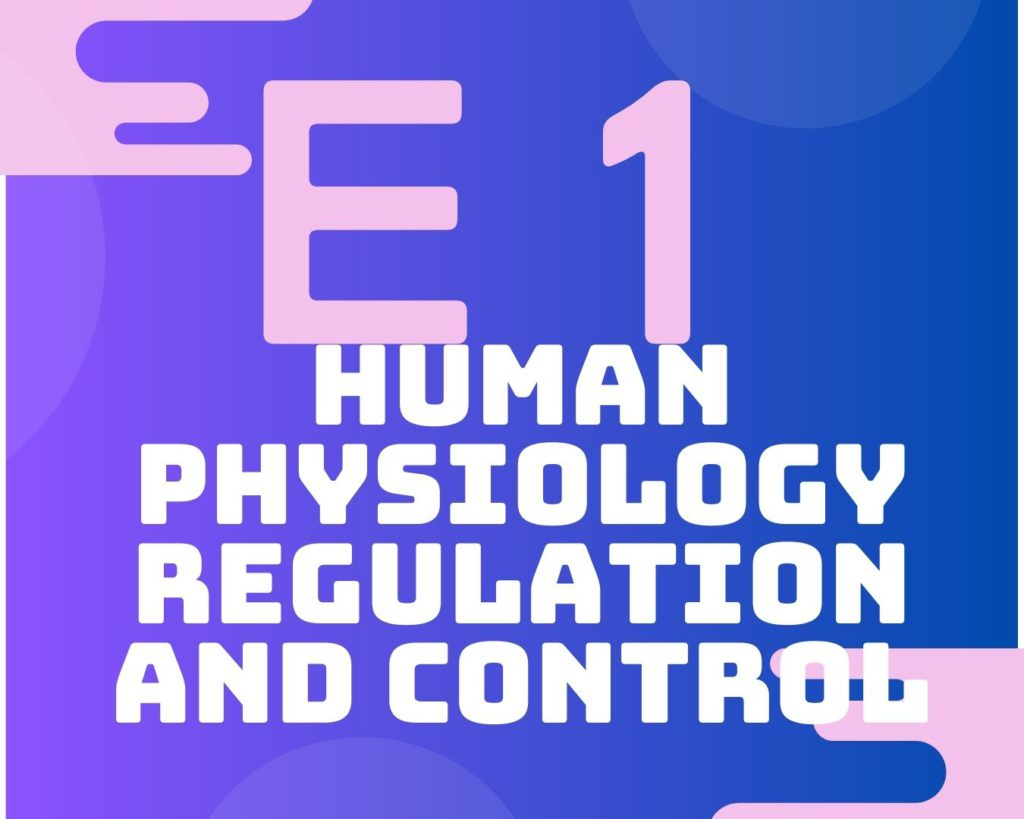 E1 Human physiology regulation and control
