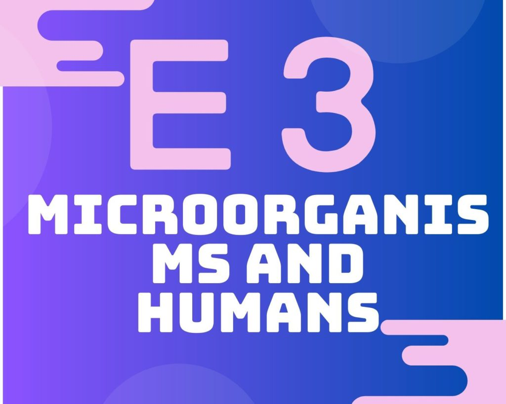 E3 Microorganisms and humans